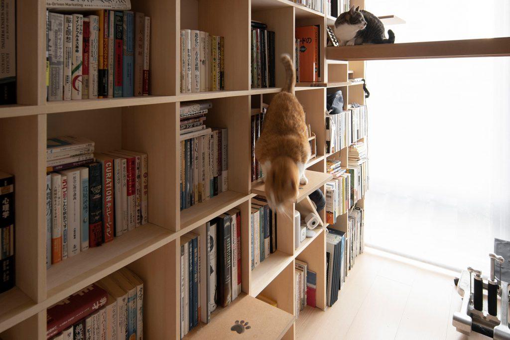 3面本棚 | ニコニコ動画メンタリストDaiGoさんの可動式本棚